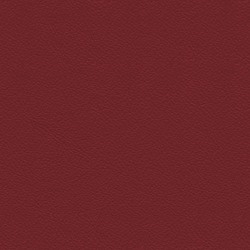 Läder Naturell röd [+2 200 kr]