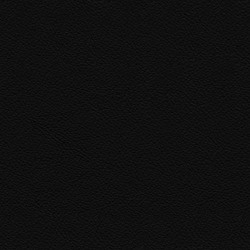 Läder svart med kontrastsöm [+ 2 710 kr]