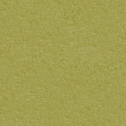 Fenice Kiwi [+ 4 880 kr]