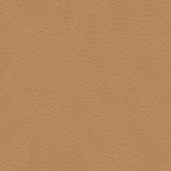 Läder Cognac [+10 570 kr]