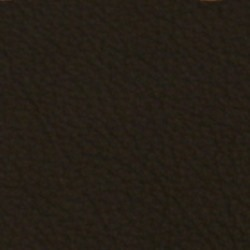 Läder 5002 svart [- 210 kr]