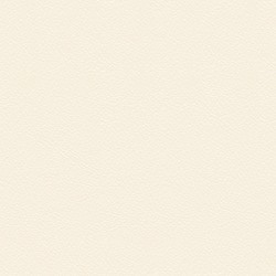Läder 5018 vit [-  250 kr]