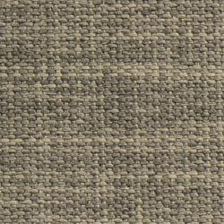 Honduras grey
