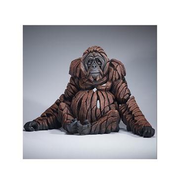 Bild på Orangutang