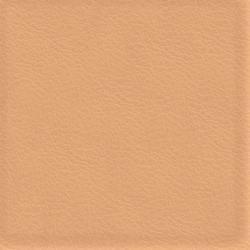 Läder sahara [+1 800 kr]