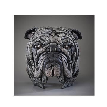 Bild på Bulldog vit