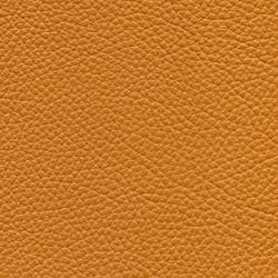 Läder Classic Cognac 033 [+4 110 kr]