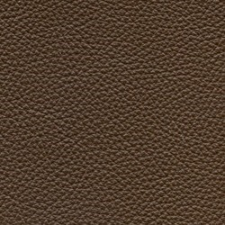 Läder Classic Brun 003 [+ 9 270 kr]