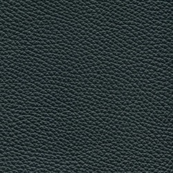 Läder Classic Svart 009 [+13 870 kr]