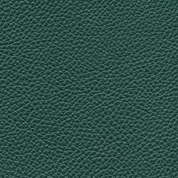 Läder Classic Grön 007 [+12 750 kr]