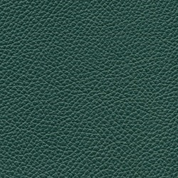 Läder Classic Grön 007 [+10 700 kr]
