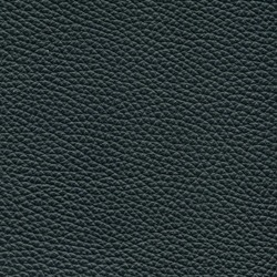 Läder Classic Svart 009 [+ 9 830 kr]