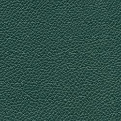 Läder Classic Grön 007 [+ 10 690 kr]