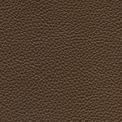 Läder Classic Brun 003 [+8 800 kr]