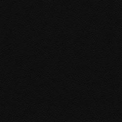 Läder Svart [+1 890 kr]