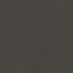 Läder greyshadow [+8 400 kr]