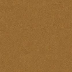 Jesolo Cognac [+2 840 kr]