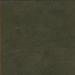 Läder Vintage Green [+ 13 310 kr]