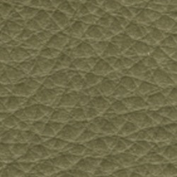 Läder Sauvage  610 grön (Anilin) [+ 6 330 kr]