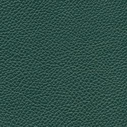 Läder: Classicgrön 07