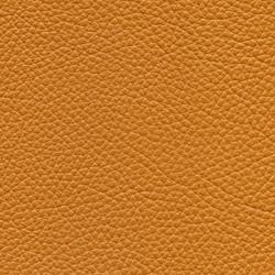 Läder: Classic cognac 33