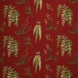 Royal Ferns 01 röd